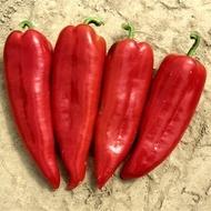 Seminte ardei kapia Kapro F1 (500 seminte), rosu luminos, Seminis