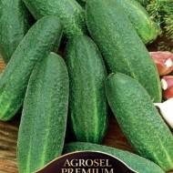 Seminte castraveti Metex F1 (100 seminte), tip cornison, Hektar