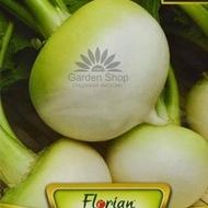 Sfecla de Salata White Verduna - 1 gr - Seminte de Sfecla Alba de Salata de la Florian