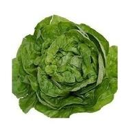 Sunstar-5gr.-seminte de salata vara-toamna,spatii neprotejate,450-550gr. de la Hazera