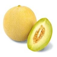 Tenor F1 - 500 sem - Seminte de pepene galben ce se caracterizeaza prin fructe atractive si rotunde cu pulpa consistenta de culoare alb-verzui si cu un continut ridicat de zahar oferind astfel un gust deosebit de la Sakata