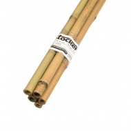 Tutori Stocker din bambus 14 -16 mm (150 cm) - set 5 buc