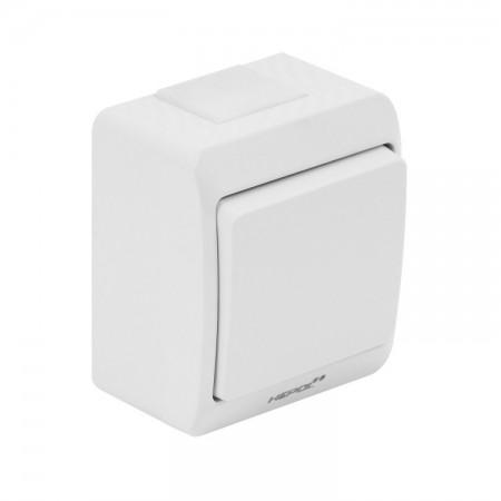 Usa garaj electrica 2400 x 2400 , alb 9016 , lamele 55 mm