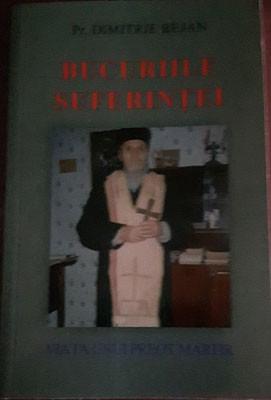 Pr.Dimitrie Bejan-Bucuriile suferintei
