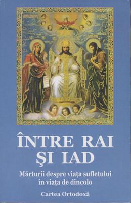 INTRE RAI SI IAD