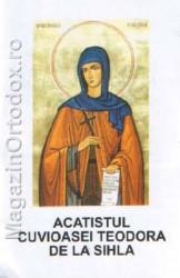 Acatistul Cuvioasei Teodora de la Sihla(7 august)