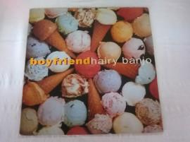 Boyfriend – албум Hairy Banjo