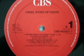 Cruel Story Of Youth ‎– албум Cruel Story Of Youth изображения