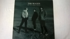 The Woods ‎– албум It's Like This изображения