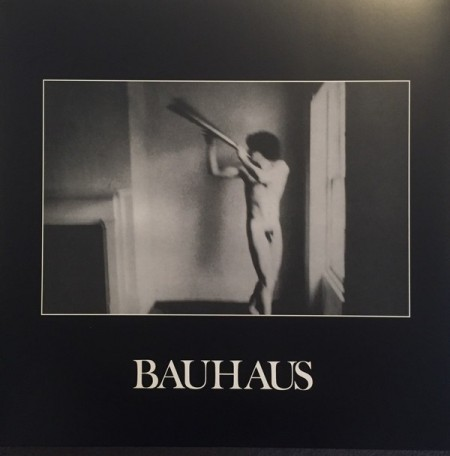 Bauhaus ‎– албум In The Flat Field