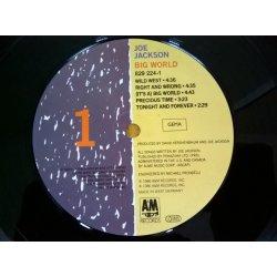 Joe Jackson – албум Big World