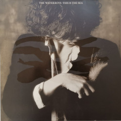 The Waterboys – албум This Is The Sea