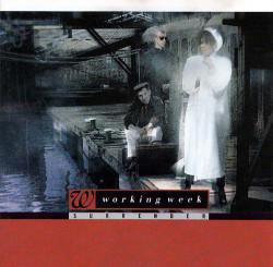 Working Week – албум Surrender (CD)