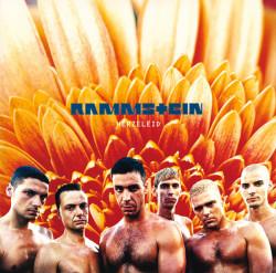 Rammstein – албум Herzeleid
