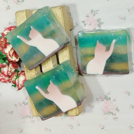Cats in Transparent Soap