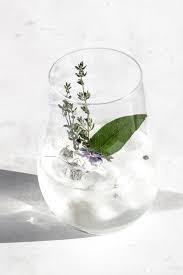 The Tonic Fragrance Oil