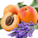 Lavender and Spring Apricot Fragrance Oil