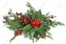 Cypress & Berries Fragrance Oil