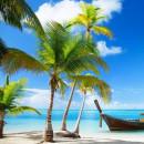 Coconut Cabana Fragrance Oil
