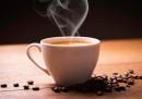 Fresh Coffee Fragrance Oil