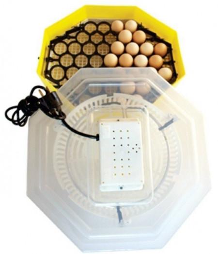 Incubator electric cu dispozitiv de intoarcere 41 oua gaina - 74 oua prepelita CLEO 5D