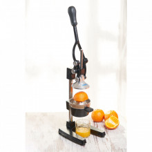Storcator profesional citrice/rodie