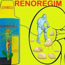 Tratament naturist pietre la rinichi si bila, Renoregim (resolutivo regium) 600 ml