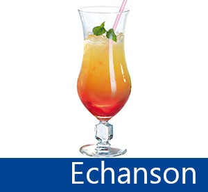 Echanson