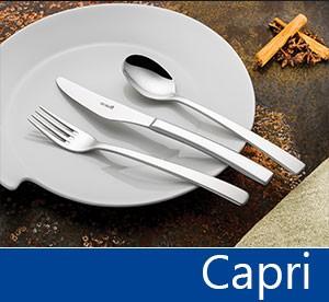 Tacâmuri de inox Capri