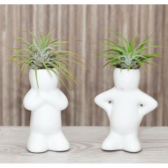 Set de 2 vaze Verdon, ceramica, albe, 6 x 4 x 2 cm imagine 2021 chilipirul zilei