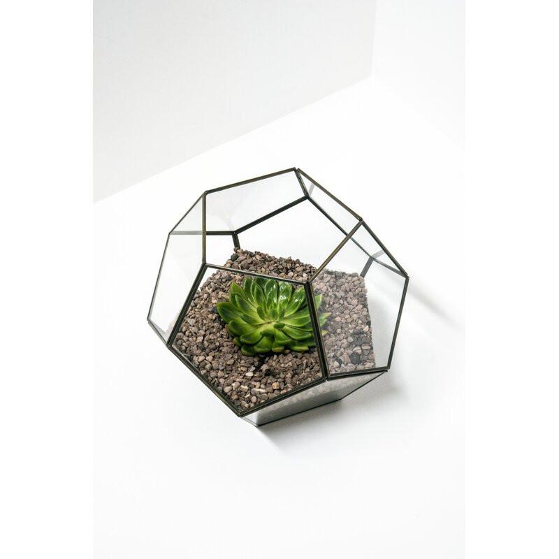 Terariu din sticla, 24 x 30 cm imagine 2021 chilipirul zilei