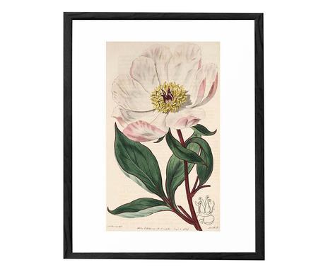 Tablou Flower V chilipirul-zilei.ro