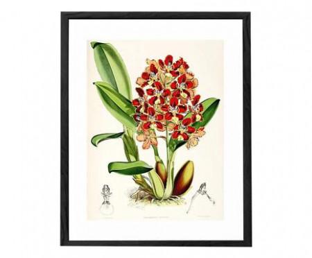 Tablou Botanical I