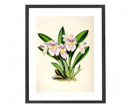 Tablou Botanical IV