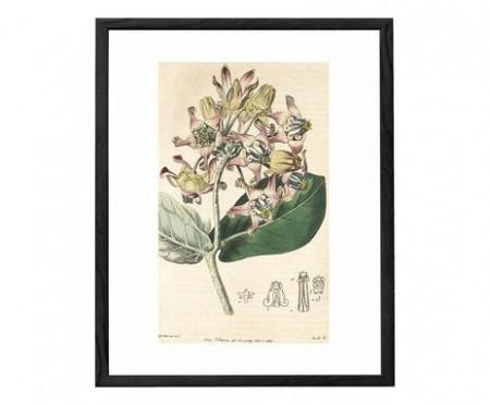 Tablou Flora II