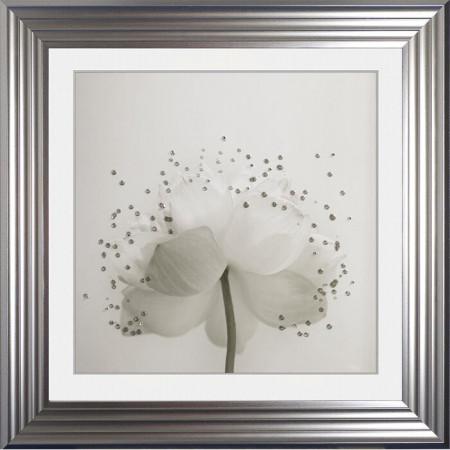 Tablou 'Lotus 2', 75 x 75 cm