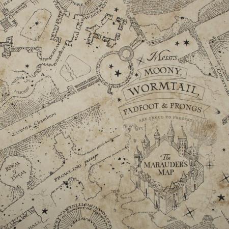 Tapet Hogwarts Map, 1000cm x 52cm
