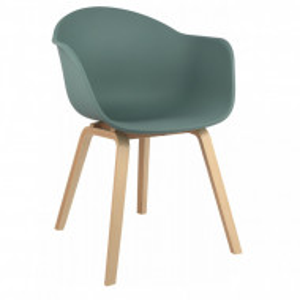 Fotoliu Claire, plastic/lemn, verde, 54 x 60 x 78 cm