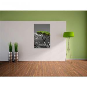 """Tablou cu """"Arborele Mediteranian"""", 100 x 70 cm"""