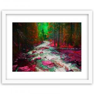 Tablou 'Fairytale Forest 3', 40 x 60 cm