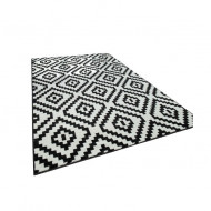 Covor Jerrold Shag negru/alb 70 x 250cm
