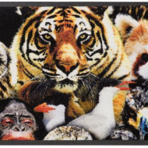 Pres de intrare Animali by Bruno Banani, 50 x 75 cm, multicolor