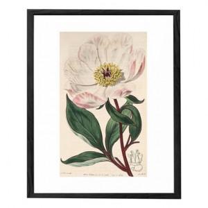 Tablou Flower V