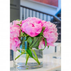 Set de 2 vaze Alisha-May, sticla, 12 x 12 x 12 cm