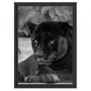 """Tablou """"Pantera neagra"""", 55 x 40 cm"""