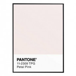 Tablou Pantone Petal Pink, 30x40 cm