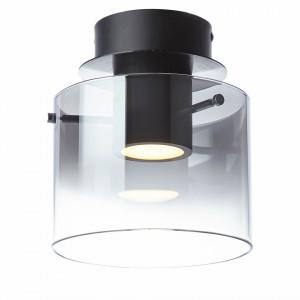 Lustra LED Beth I sticla/otel, negru, 1 bec, 240 V, 10 W