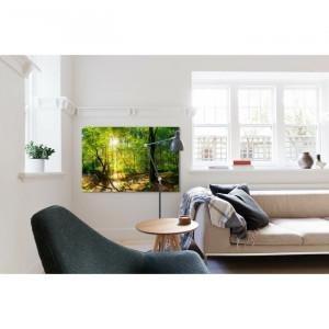 Tablou, panza, verde, 80 x 120 cm