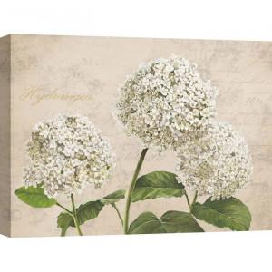 Tablou Remy Dellal, alb/bej/verde, 60 x 80 cm