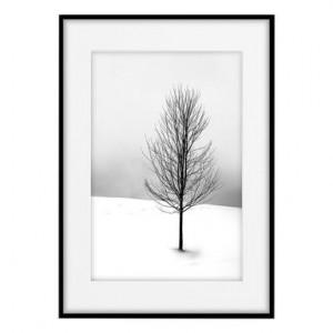 Tablou Snowy Tree, 50x70 cm